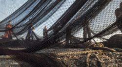Straight net fishing