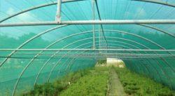 Filets d'ombrage monofils pour tunnels