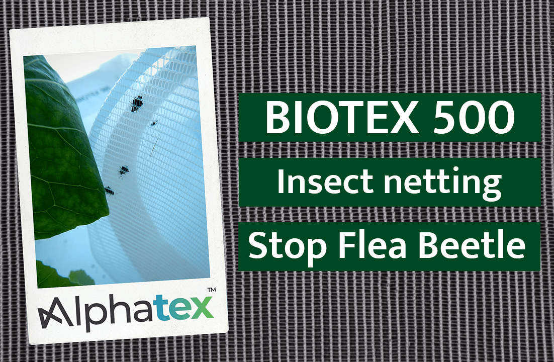 Biotex 500 insect net