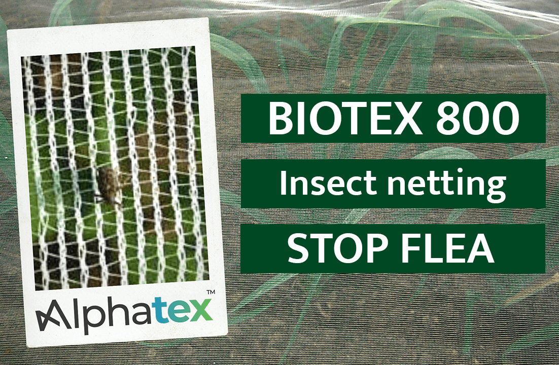 Biotex 800 insect net