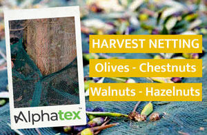 Harvest netting for olives, chestnuts, walnuts, hazelnuts and tree seeds. For professionals