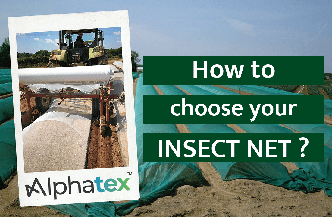 How to choose your insect net